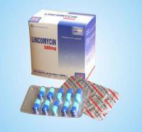 Lincomycin 10 vỉ